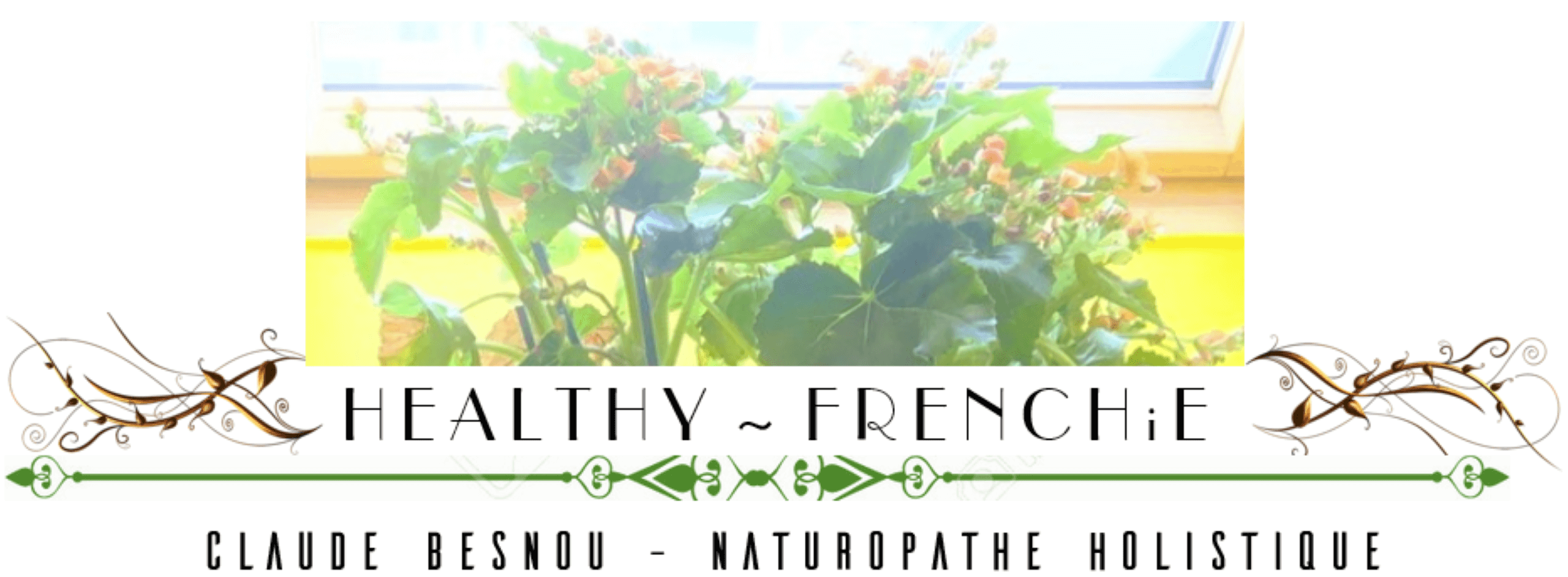 HEALTHY~FRENCHiE